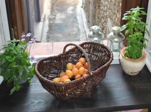 Abrikoser fra Madame O