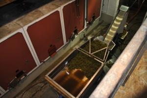 Druerne kører via en transportsnegl op i den store ståltank